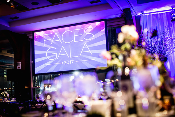 Image of 2017 Gala promoting 2018 event.